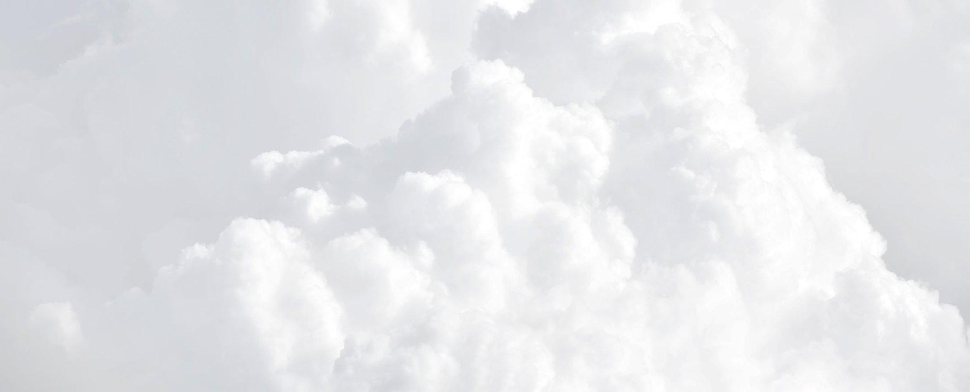 Netrics_Hybrid-Cloud_Pillar-Page_03
