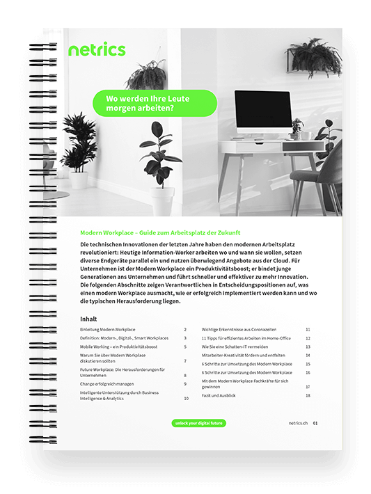 netrics-ebook-guide-modern-workplace-mockup-sheet
